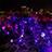 福岡城 チームラボ 城跡の光の祭2