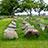 熊本城の石垣の石