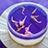 ハーブゼリーレアチーズケーキ